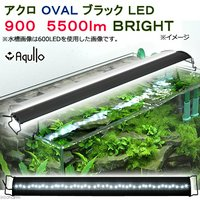 アクロ OVALブラック LED 900 5500lm BRIGHT Aqullo Series