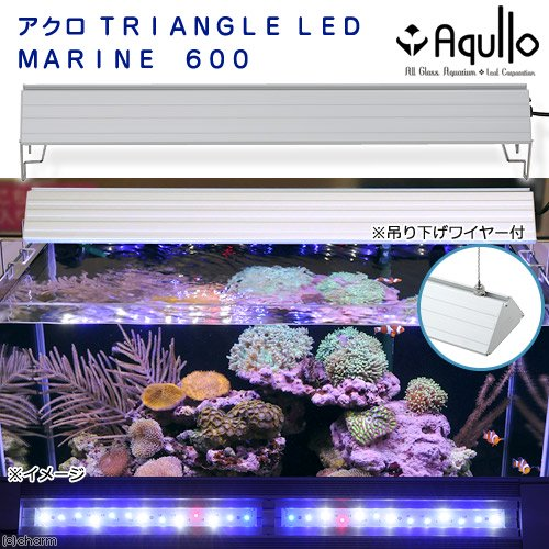 アクロ TRIANGLE LED MARINE 600 1000lm 20000K Aqullo Series 沖縄別途送料