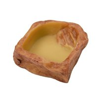 GEX エキゾテラ ウォーターディッシュ S 爬虫類 水入れ ジェックス