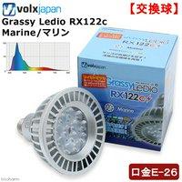ボルクスジャパン Grassy LeDio RX122c Marine/マリン