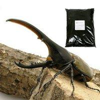 ヘラクレスヘラクレス幼虫(3匹) + XLマット カブト用 10リットル(説明書付)