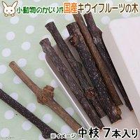 国産 キウイフルーツの木 中枝 7本入 かじり木 小動物猫用おもちゃ