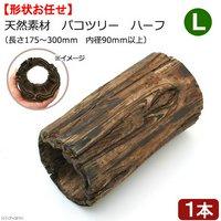 天然素材 パコツリー ハーフ L(長さ175~300mm 内径90mm以上)