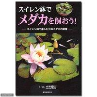 スイレン鉢でメダカを飼おう! スイレン鉢で楽しむ日本メダカの飼育