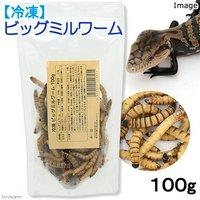 冷凍★冷凍ビッグミルワーム 100g 爬虫類エサ 無添加 無着色 別途クール手数料