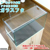 ガラスフタ オールガラス水槽アクロ60用(幅58×奥行24cm) 1枚