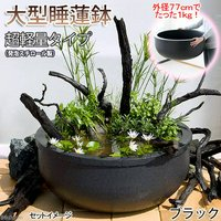 大型睡蓮鉢(メダカ鉢)超軽量タイプ(約1kg)ブラック 睡蓮鉢金魚鉢メダカ鉢