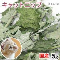 国産 キャットニップ 5g 無添加 無着色 猫用 ぱっくん亭