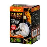 昼用集光型 サングロー タイトビームバスキング スポットランプ 50W(橙)2個 爬虫類 保温球