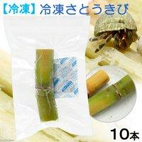 冷凍★冷凍サトウキビ オカヤドカリのエサ 約10~13cm(10本セット) 別途クール手数料