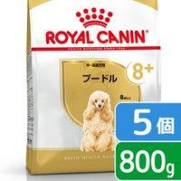 ロイヤルカナン プードル 中高齢犬用 800g×5袋 3182550824491 ジップ付