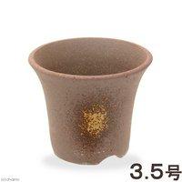 吹ソリ型山草鉢 3.5号 山野草 植木鉢 ミニミニ盆栽鉢