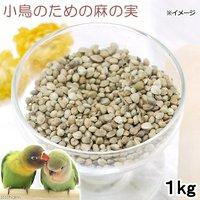 小鳥のための麻の実 1kg 鳥 フード 餌 おやつ 無添加 無着色
