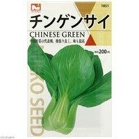 野菜の種 チンゲンサイ