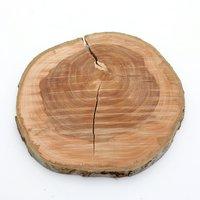 国産 天然素材の切り株ステージ うすいりんごの木 L 1個 かじっても安心 かじり木