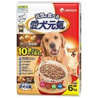 愛犬元気 10歳以上の中大型犬用 ささみビーフ緑黄色野菜小魚入り 6.0kg
