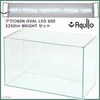 スーパークリア アクロ60S OVAL LED 600 3250lm BRIGHT セット