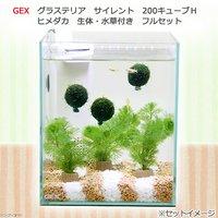 (水草)GEX グラステリア サイレント 200キューブH しましま砂利のメダカ水草セット ヒメダカ フルセット