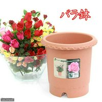 リッチェル バラ鉢 ブラウン 8号 φ24×24cm バラ用 イングリッシュローズ フレンチローズ