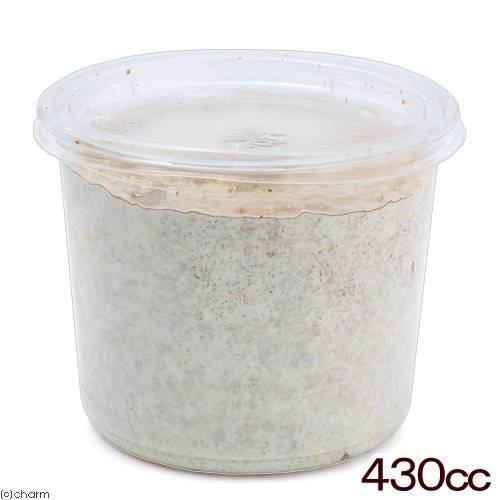 菌糸カップ XL−CUP カワラタケ 430cc 10個 昆虫 育成 幼虫