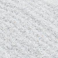 コーラルカルシウムサンド 1kg ミディアム(#3) 海水水槽用底砂