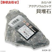 カミハタ アクアリウムロック 貝堆石 形状お任せ