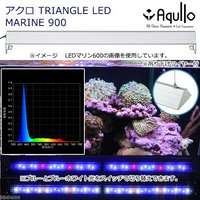 アクロ TRIANGLE LED MARINE 900 20000K Aqullo Series