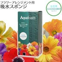 アクアフォーム フラワーアレンジメント用 吸水スポンジ 生花用 スタンダード