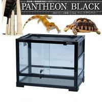 三晃商会 SANKO レプティワイルド パンテオン ブラック BK4535(45.5×30.5×35cm)