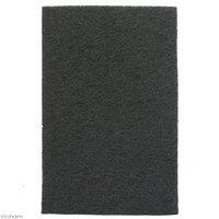 EPIWEB Panels 290×440×2cm エピウェブ パルダリウム テラリウム ビバリウム