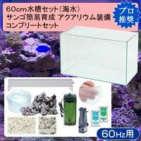 60cm水槽セット サンゴ簡易育成コンプリート 海水アクアリウム(水槽&他11点)プロ推奨セット 60Hz西日本用