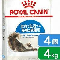 ロイヤルカナン 猫 インドア ロングヘアー 成猫用 4kg 1箱4袋 3182550739405  ジップ付