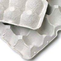 紙製卵トレー 45×29cm 3枚セット 昆虫 コオロギ 飼育 ハウス ケース