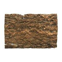 コルク樹皮 45cm水槽用 1枚 バックパネル ビバリウム