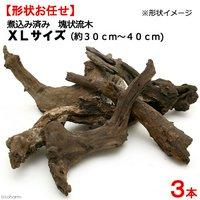 形状お任せ 煮込み済み 塊状流木 XLサイズ(約30~40cm) 3本