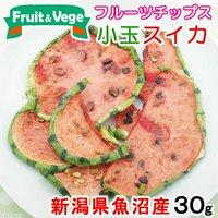 新潟県魚沼産 小玉スイカ 30g 国産 犬用おやつ PackunxCOCOA フルーツ&ベジ フルーツチップス