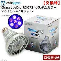 ボルクスジャパン GrassyLeDio RX072 カスタムカラー Violet/バイオレット