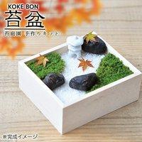 苔盆(1個) 苔庭園手作り栽培キット