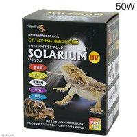 ペットペットゾーン ソラリウム 50W ランプ、交換球、ソケットセット
