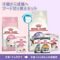 ロイヤルカナン 太りやすい猫向け 子猫から成猫へ ドライ2種2袋+ウェット4種15袋
