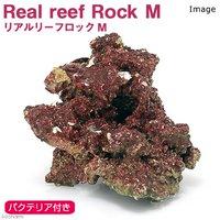Real Reef Rock(リアルリーフロック) バクテリア付き Mサイズ(1個)(形状お任せ)