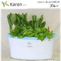 ホームハイポニカ KAREN ブルー 水耕栽培キット 家庭菜園 ベランダ菜園