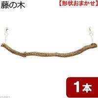 天然素材 吊り下げ式 藤の木 スパイラル 細枝 (長さ550~600mm 直径34mm以下)