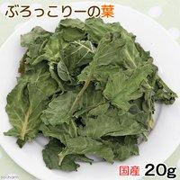 国産 ブロッコリーの葉 20g 小動物のおやつ