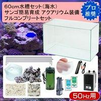 60cm水槽セット サンゴ簡易育成フルコンプリート 海水アクアリウム(水槽&他13点)プロ推奨セット 50Hz東日本用