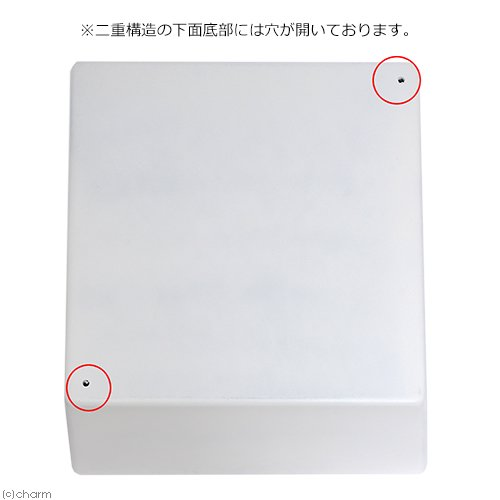 睡蓮鉢(メダカ鉢) 新型 凛 RIN 角型 ホワイト M 睡蓮鉢金魚鉢メダカ鉢