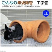 ひんやり素焼陶管 T字管 LL 小動物用 ハウス トンネル