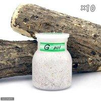 菌糸ビン G-pot 550cc 10本