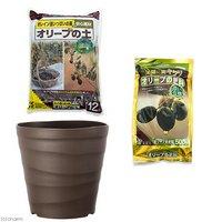花ごころ オリーブの土+オリーブの肥料+アップルウェアー クラフトポット 30型 ダークブラウン セット