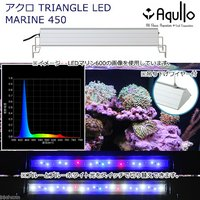 アクロ TRIANGLE LED MARINE 450 20000K Aqullo Series